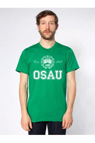 Футболка ОмГАУ