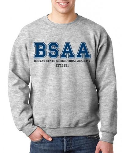 Свитшот БГСХА (BSAA)